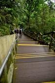 新溪口吊橋:DSC_6501.JPG