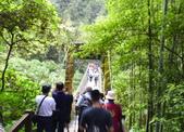 溪頭自然教育園區:_DSC0039.JPG