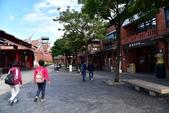宜蘭國立傳統藝術中心:DSC_2423.JPG