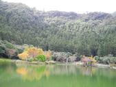 明池國家森林遊樂區:明池國家森林遊樂區 025.jpg