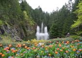 維多利亞布查花園:維多利亞布查花園_1000420_0510 862.jpg