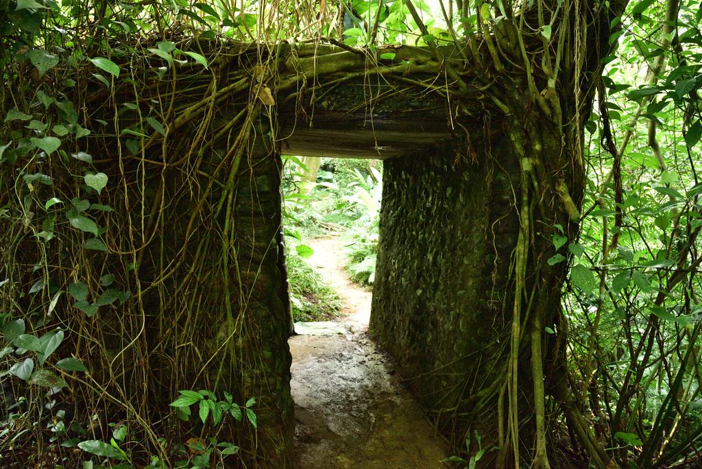 富陽自然生態公園 (26).jpg - 富陽自然生態公園