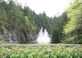 維多利亞布查花園:維多利亞布查花園_1000420_0510 865.jpg