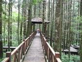 明池國家森林遊樂區:明池國家森林遊樂區 058.jpg