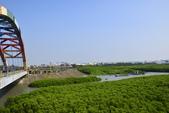 新竹市十七公里海岸風景區:_DSC0109.JPG