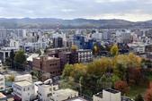 北海道(道東,道央):DSC_1070.JPG