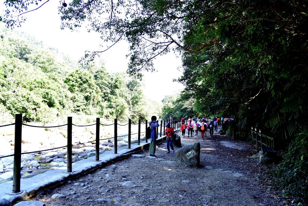 蓬萊溪護魚步道  (13).JPG - 蓬萊溪護魚步道
