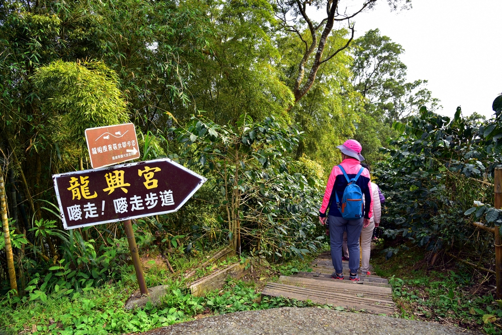 二尖山步道 (8).JPG - 二尖山步道,碧湖山觀光茶園,麗景精品休閒旅館