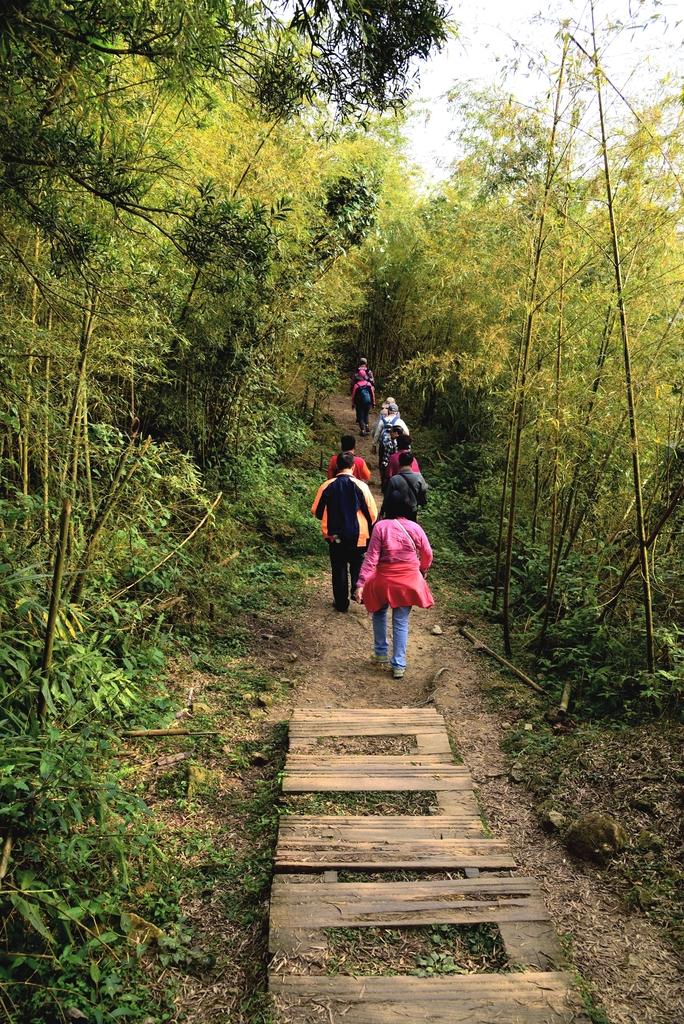 二尖山步道 (12).JPG - 二尖山步道,碧湖山觀光茶園,麗景精品休閒旅館