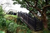 社頂自然公園,船帆石:社頂自然公園 (8).JPG