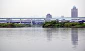 藍色公路華江溼地之旅:_DSC0051.JPG