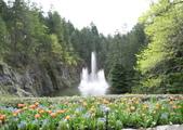 維多利亞布查花園:維多利亞布查花園_1000420_0510 867.jpg