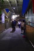 新月橋夜景:(7).JPG