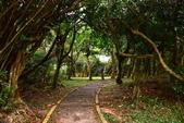 社頂自然公園,船帆石:社頂自然公園(7).JPG