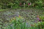 哭泣湖畔自然生態園區:DSC_0275.JPG