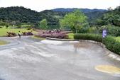 龍潭湖:DSC_2836.JPG