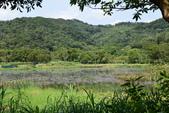 哭泣湖畔自然生態園區:DSC_0294.JPG