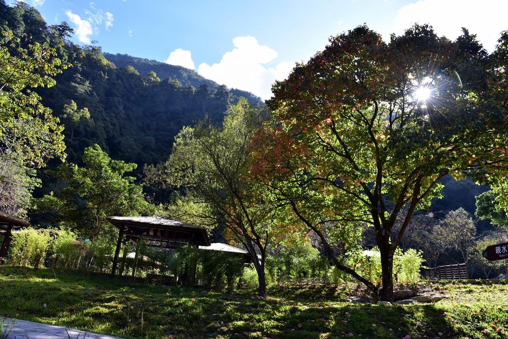 八仙山國家森林遊樂區 (10).JPG - 八仙山國家森林遊樂區