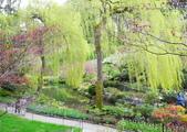 維多利亞布查花園:維多利亞布查花園_1000420_0510 873.jpg