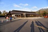 北海道-知床五湖:知床五湖 (4).JPG
