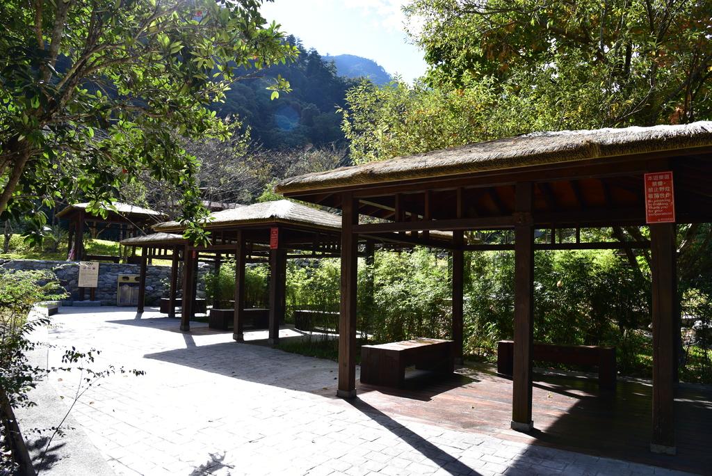 八仙山國家森林遊樂區 (12).JPG - 八仙山國家森林遊樂區