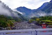 山中秘境-賓拉賞農場:DSC_0198.JPG