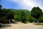數碼天空景觀園區:DSC_6361.jpg