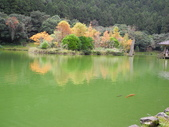 明池國家森林遊樂區:明池國家森林遊樂區 028.jpg
