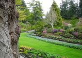 維多利亞布查花園:維多利亞布查花園_1000420_0510 876.jpg