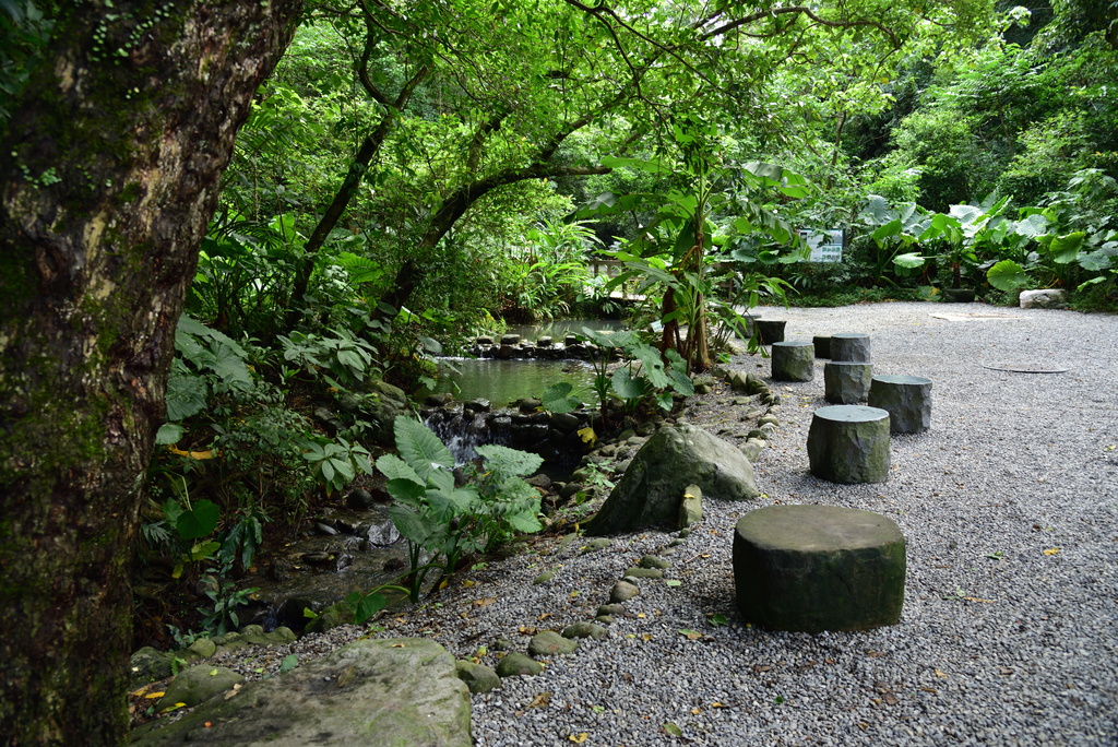 富陽自然生態公園 (9).jpg - 富陽自然生態公園