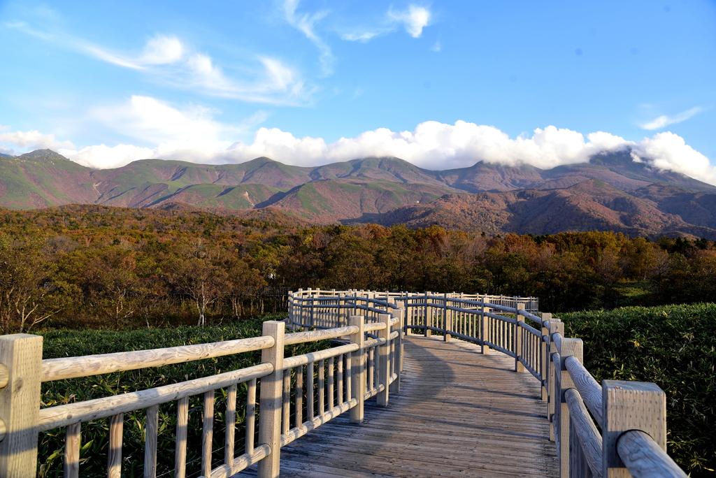 知床五湖 (11).JPG - 北海道-知床五湖