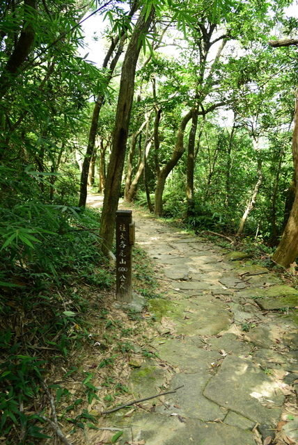 (58).JPG - 劍潭山,文間山,大崙尾山