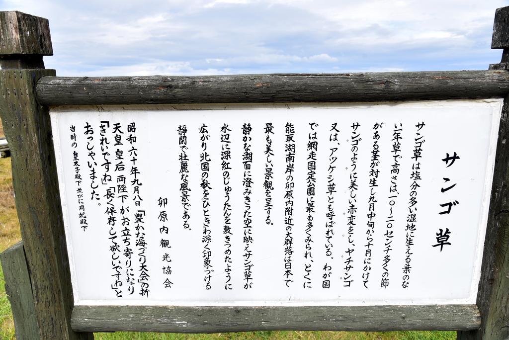 DSC_0592.JPG - 北海道(道東)