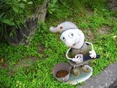峇里森林溫泉渡假村:峇里森林溫泉渡假村七個小矮人之2.jpg