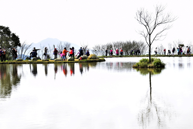 _DSC0635.JPG - 三芝秘境-水中央