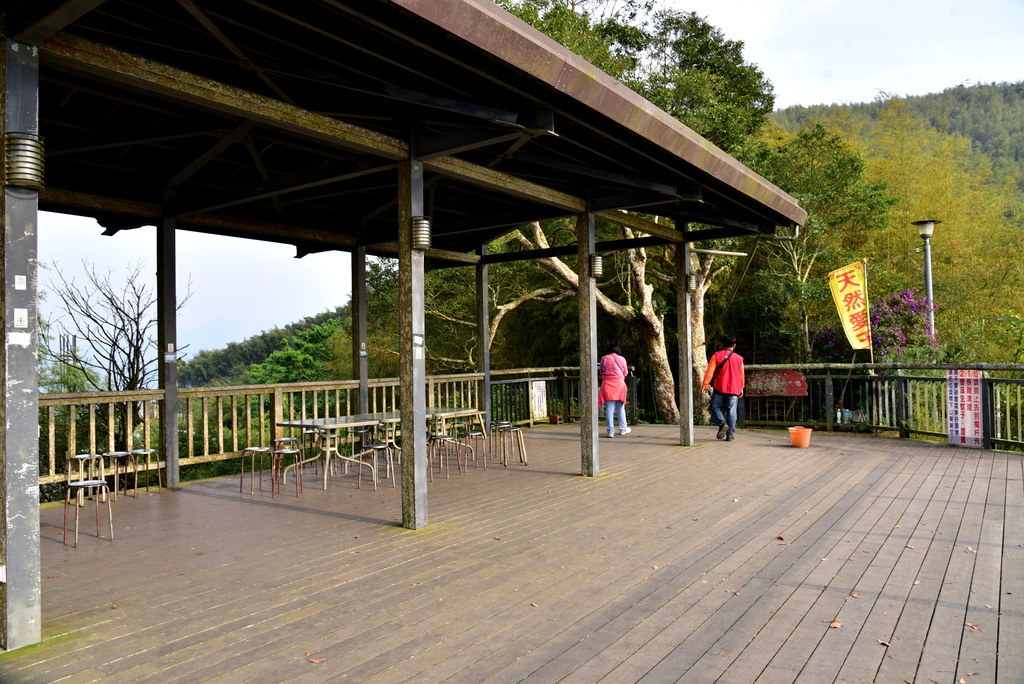 二尖山步道 (16).JPG - 二尖山步道,碧湖山觀光茶園,麗景精品休閒旅館