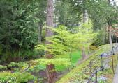 維多利亞布查花園:維多利亞布查花園_1000420_0510 877.jpg