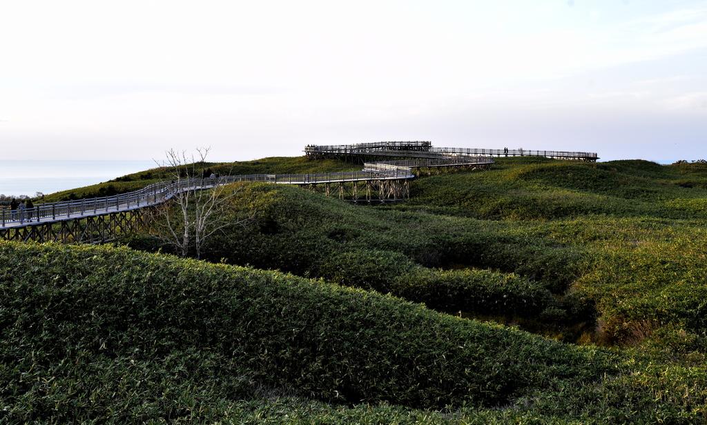 知床五湖 (14).JPG - 北海道-知床五湖