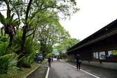 林田山林業文化園區,大農大富平地森林園區 :DSC_5153.JPG