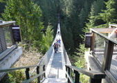 大溫哥華區:北美最長的吊橋CAPILANO_1000420_0510 102.jpg