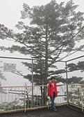 99.9.15日光明智平,中禪寺湖:中禪寺湖IMG_3140.JPG