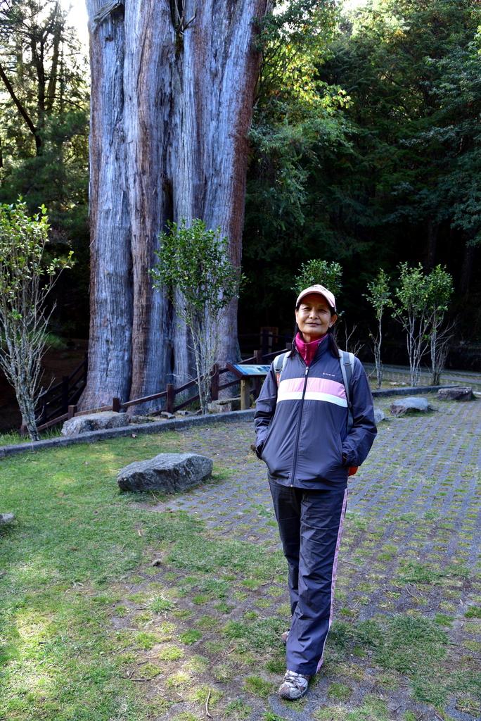 大雪山國家森林遊樂區 (42).JPG - 大雪山國家森林遊樂區