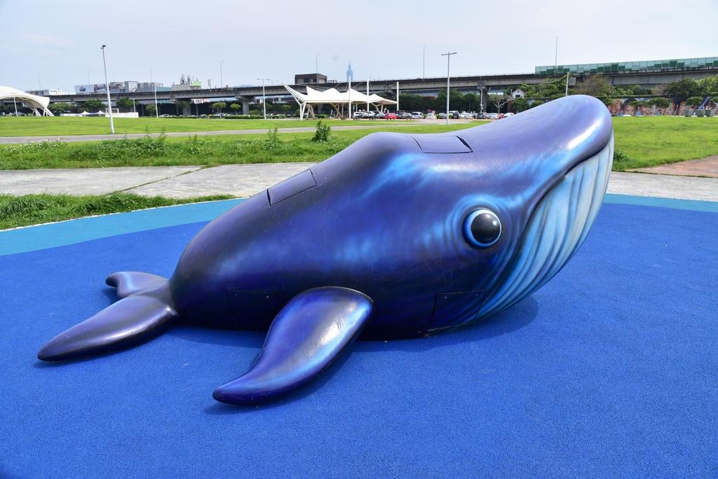 DSC_3369.JPG - 大佳河濱公園海洋遊戲場