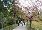 維多利亞布查花園:維多利亞布查花園_1000420_0510 879.jpg