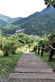 知本國家森林遊樂區:知本國家森林遊樂區 (48).JPG
