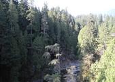 大溫哥華區:北美最長的吊橋CAPILANO_1000420_0510 107.jpg