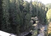 大溫哥華區:北美最長的吊橋CAPILANO_1000420_0510 108.jpg
