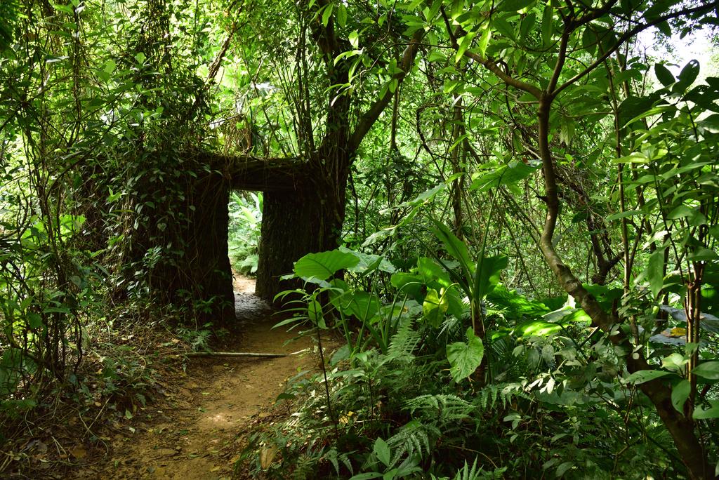 富陽自然生態公園 (25).jpg - 富陽自然生態公園