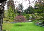 維多利亞布查花園:維多利亞布查花園_1000420_0510 880.jpg