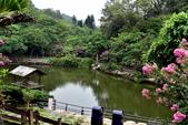 九芎湖休閒農場:九芎湖休閒農場 (9).JPG
